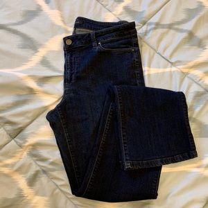 Ann Taylor Jeans The Boot Curvy Fit Size 10